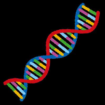 遺伝,不安神経症