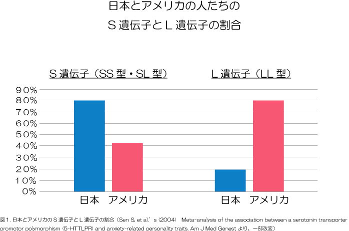 日本とアメリカの人たちの遺伝子について