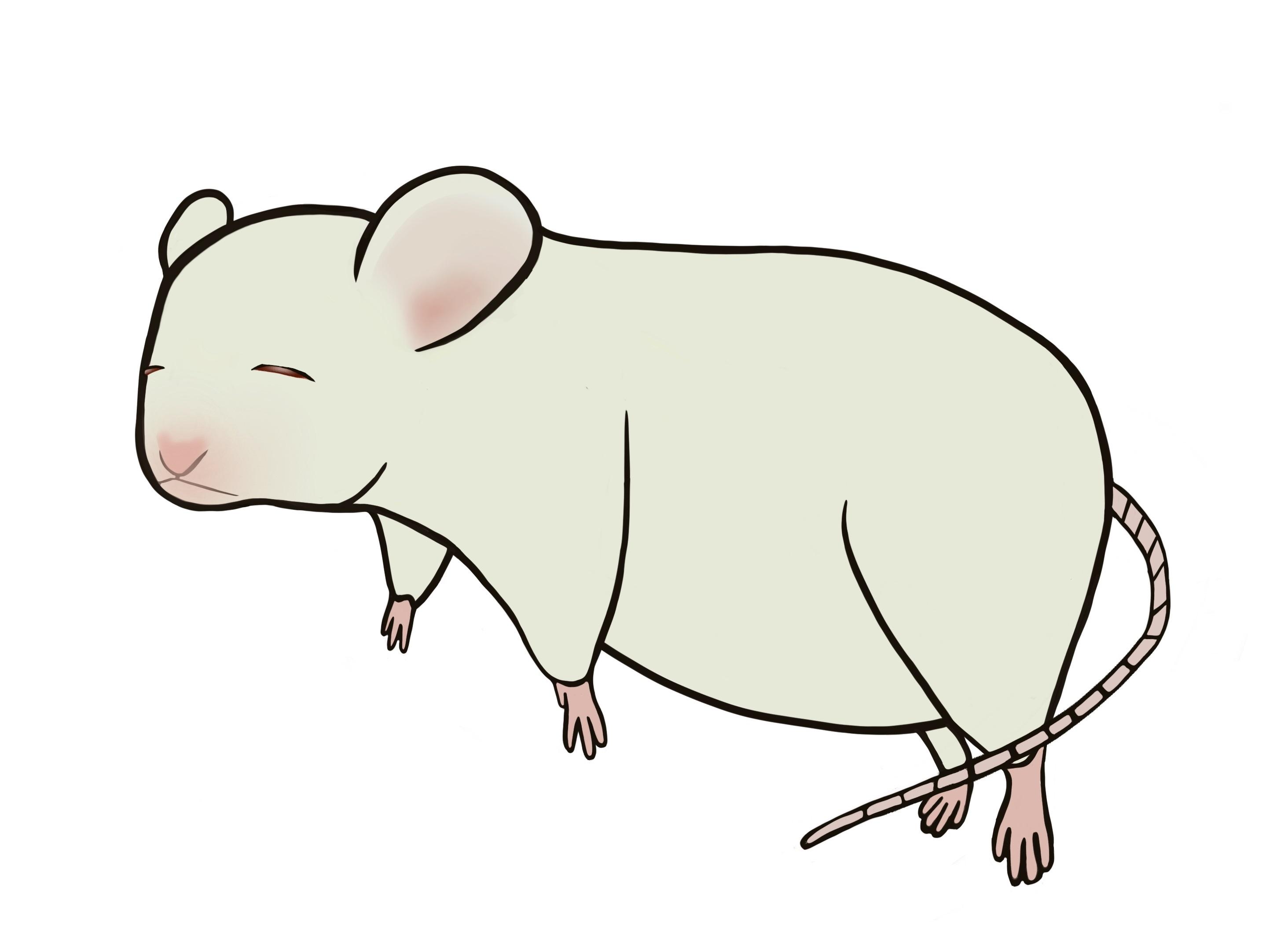 ストレス症状をマウス実験で解説