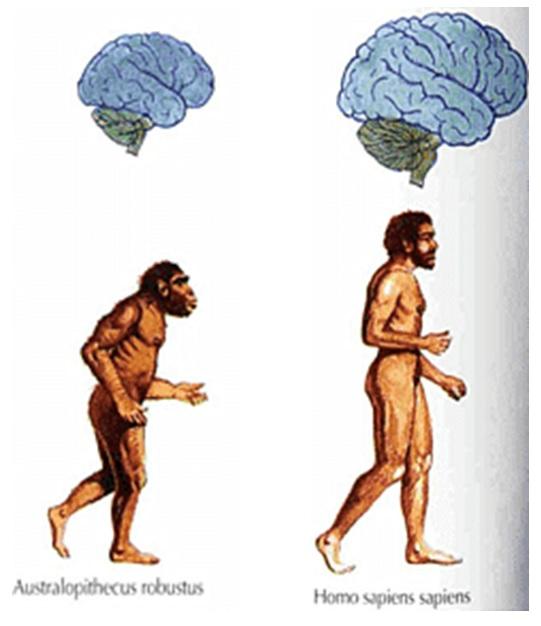 先祖と自我の芽生え