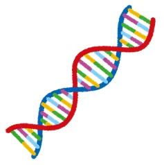 遺伝とDNA